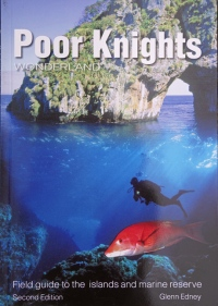 poor-knights-cover-small