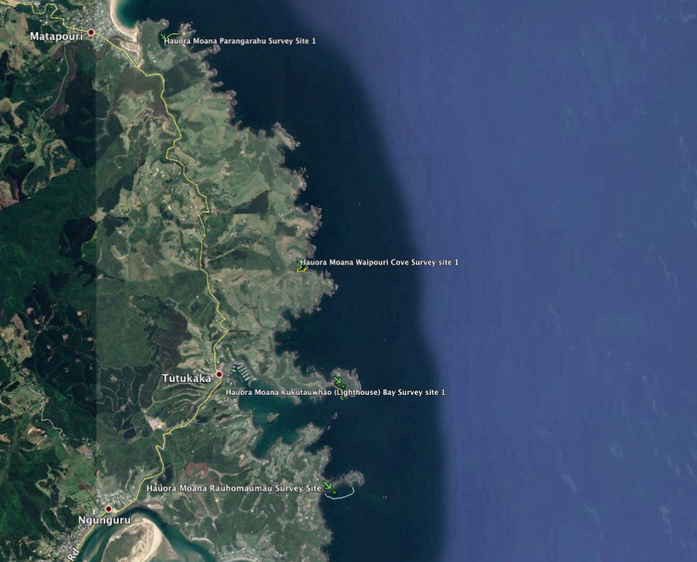 Survey satelite image
